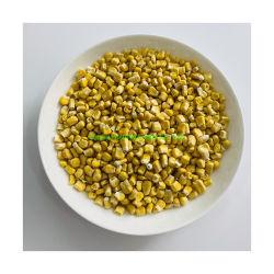 Traitement du séchage sous vide OEM usine Freeze maïs séché aliments en vrac