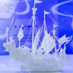 Aangepaste de koningen rangschikken de Snelle Dienst van de Druk van de Levering SLA Grote 3D met Buitengewone Kwaliteit