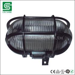 P54 60W, 100W la lumière de tablier en plastique pour l'extérieur
