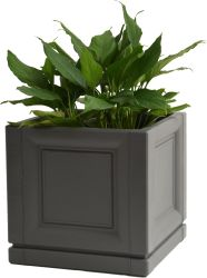 Fleur de carrés Box - pot de plastique en rotin (DK4211-DK4221)