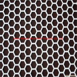 / Hexagonal orificio redondo de metal perforado para la construcción de la Decoración