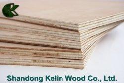 Werbungs-oder Melamin-Furnierholz-Standardgröße 1220*2440/1250*2500/915*1830mm Philippinen