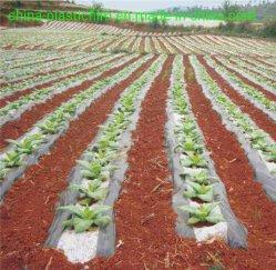 Contrôle des mauvaises herbes en plastique de la couverture du sol film/Film de débroussaillage anti insectes