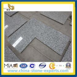 G439 Bianco Taupe Granite Countertop для Kitchen, ванной комнаты