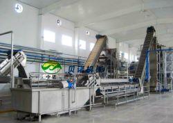 Automatique de ligne de production de pâte de tomate en conserve