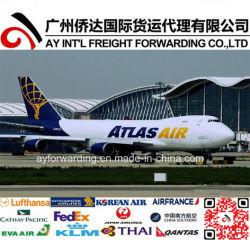 Экономические службы воздушных перевозок в Сидней