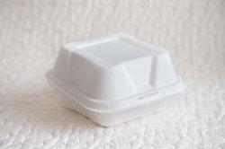 De biologisch afbreekbare Beschikbare Doos van Doggie van de Salade van de Sandwich van de Doos van de Cake van Bento van de Beroemdheid van het Web van de Doos van de Hamburger