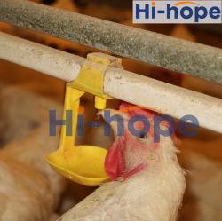 Las aves de corral pollo alimentación de los pezones de beber y beber para criar pollos de carne de pollo