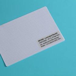 Conseil de l'impression de matériaux de publicité de bannière PVC Flex