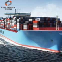 حاوية شحن بحرية مدمجة احترافية من الصين إلى الولايات المتحدة الأمريكية كندا أستراليا المملكة المتحدة
