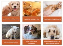 Complemento nutricional alimentos para mascotas perros gatos motilidad del esperma mejorar