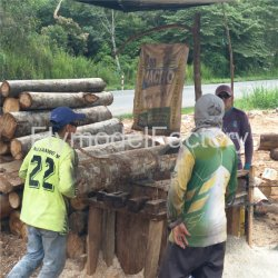 Ecuador klebte Block-Balsabaum-Holz