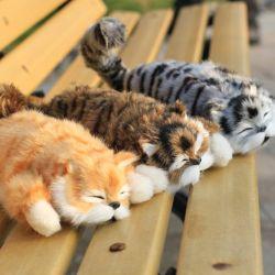 견면 벨벳 고양이 장난감은 흥미로운 재료를 실소하고 이동할 수 있다