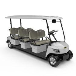 [لوور بريس] [مرشل] 6 [ستر] لعبة غولف عربات [غلف كورس] يزوّد لعبة غولف السيارة (DG-M6)