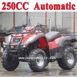 Nouveau 250cc Street Legal automatique ATV ATV (MC-356)