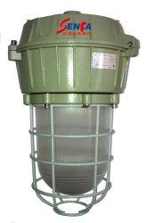 UL Взрывозащищенный лампа уровня защиты Холодный белый Взрывозащищенный энергосберегающие люминесцентные лампы