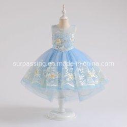 Exklusive Entwurfs-Mädchen-Couture-Kleidungs-Produkte verkauften ausschließlich Spitzenspitze-Kleid-Spitze-Kleid-Kleid-Baby-Förderung-Gebrauchsgut-Produktions-Kleid