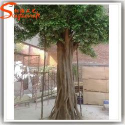 Вечнозеленые декоративных растений из стекловолокна искусственное дерево Ficus