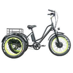 """20"""" 48V500W du moteur de moyeu avant Frein à disque FAT Tricycle électrique des pneus"""