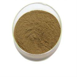 Usine BPF fournisseur chinois de suppléments nutritionnels Ginko flavones extrait de feuille Terpenlactone Ginkgo biloba