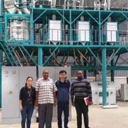 Farine de blé maïs la farine de maïs Grits Making Machine Factory Mill prix de ligne de fraisage