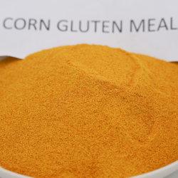 Gelbes Protein-Puder der Zufuhr-Grad-Maisglutin-Mahlzeit-60%