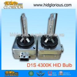 D1S 4300k Xenon HID Lampe, lampe de haute qualité