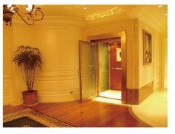 소형 주택 엘리베이터 홈 주거 엘리베이터 리프트(수동 도어 포함