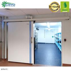 20% Energien-Einsparung-Getränkeverteiler-europäische Qualität 10 Tonnen-Huhn-Böe-Gefriermaschine-fähige Kaltlagerung für frische Blutorange