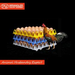Bandeja de ovos de plástico de alta qualidade com a cor verde e amarela para ovo de carregamento