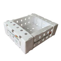 OEM напечатано Twinwall полых пластмассовых Apple и оранжевую упаковочную