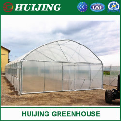 상업적인 /Garden/Flower 단 하나 경간 PE 필름 온실 꽃 또는 야채 또는 과일 또는 설치하거나 농장