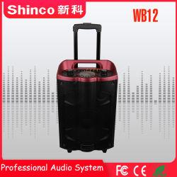 Shinco 2018 Professional nouvelle arrivée sans fil Bluetooth 12''haut-parleurs multimédia karaoké