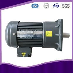 Fabricante chinês do redutor de velocidade com o Motor
