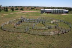 Fazenda de gado Painéis de equipamento/ Barn Farm Ranch Ovinos Caprinos Farm de Equipamentos de Proteção