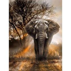 2019 بيتيّ زخرفة بيع بالجملة ماس صورة زيتيّة فيل [5د] [ديي] ماس يدهن حارّ عمليّة بيع منتوجات