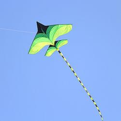 Просто под зеленой плоскости воздушного змея Дельта