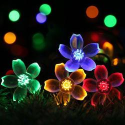 Het kleurrijke Licht van de Decoratie van Kerstmis met het Zonne LEIDENE van de Macht Licht van het Koord