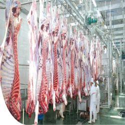 L'équipement d'abattage de porcs de l'abattage de volailles de chèvre des machines et les prix des équipements