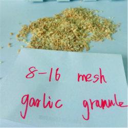 8-16 Mesh séchés Granule d'ail