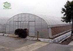 Film Tunnle agricole pour le concombre de tomates de serre