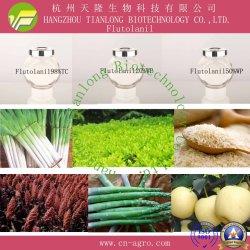 Flutolanil (98%TC, 20%WP, 50%WP)-fungicida