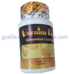 체중감소 알약 천연 슬림 바이오 화상 지방 슬림화 캡슐
