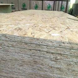 1220 x 2440mm Linyi OSB per mobilia o costruzione