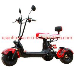 Neues elektrisches Mini-ATV für Erwachsene und Kinder