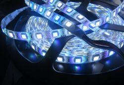 DMX512 60 Pixels executando o Efeito de cor mágica RGBW faixa LED Light