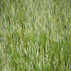 Olijfgroen gefibrilleerd garen kunstgras voor voetbal en voetbal