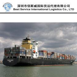 Oceaan Freight From Tianjin aan Algiers door FCL Shipment