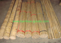 Lunga e buona decorazione di qualità Bamboo canna Reed con poco costoso Prezzo