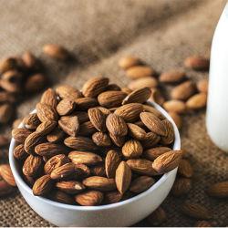 Organische süsse Mandel, rohe bittere getrocknete Mandeln Nuts